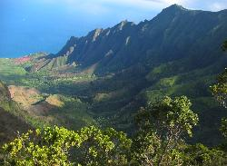 kekaha chat sites Explore kauai scuba: we lucked out nick is an incredible diving instructor - see 136 traveler reviews, 80 candid photos, and great deals for kekaha, hi, at tripadvisor.