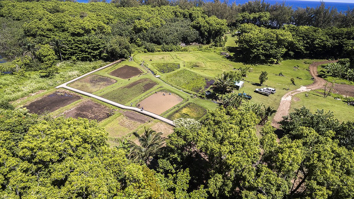 Division Of State Parks Haʻena State Park